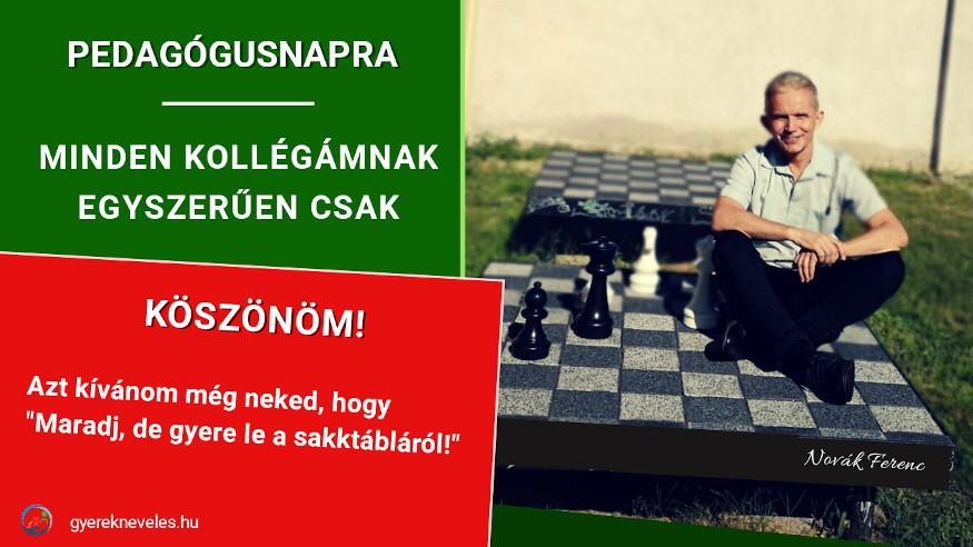 Novák Ferenc - Tanár, gyere le a sakktábláról!