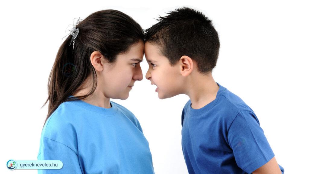 Miért veszekednek a testvérek - Gyereknevelés