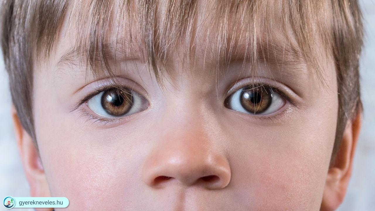 Őszinte gyerek - Gyereknevelés