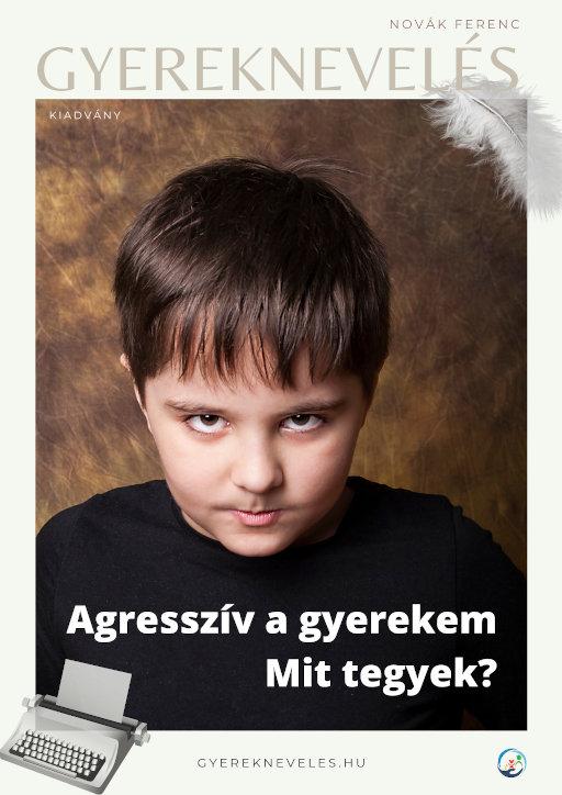 Agresszív a gyerekem - Mit tegyek? - Gyereknevelés e-book